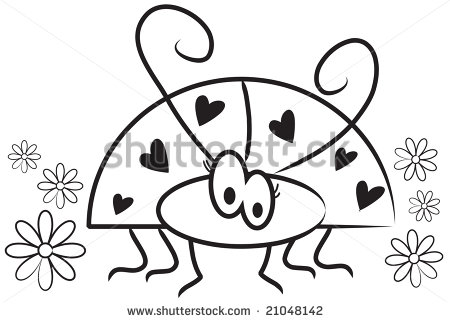 Black Ladybug  Shutterstock