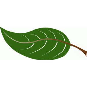 Free Leaves Clipart  Free Clipart Images Graphics Animated