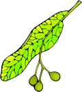Free Leaves Clipart  Free Clipart Images Graphics Animated Gifs