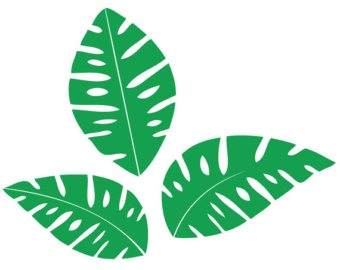 Jungle Leaf Free Cliparts That You Can Download To You Computer And