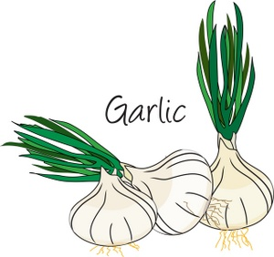 Pin Garlic Clove On My Foot Stinky Breath And Feet Cake On Pinterest