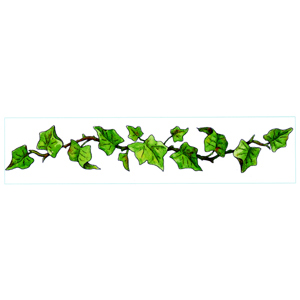 Ivy Leaf Border Clipart - Clipart Kid