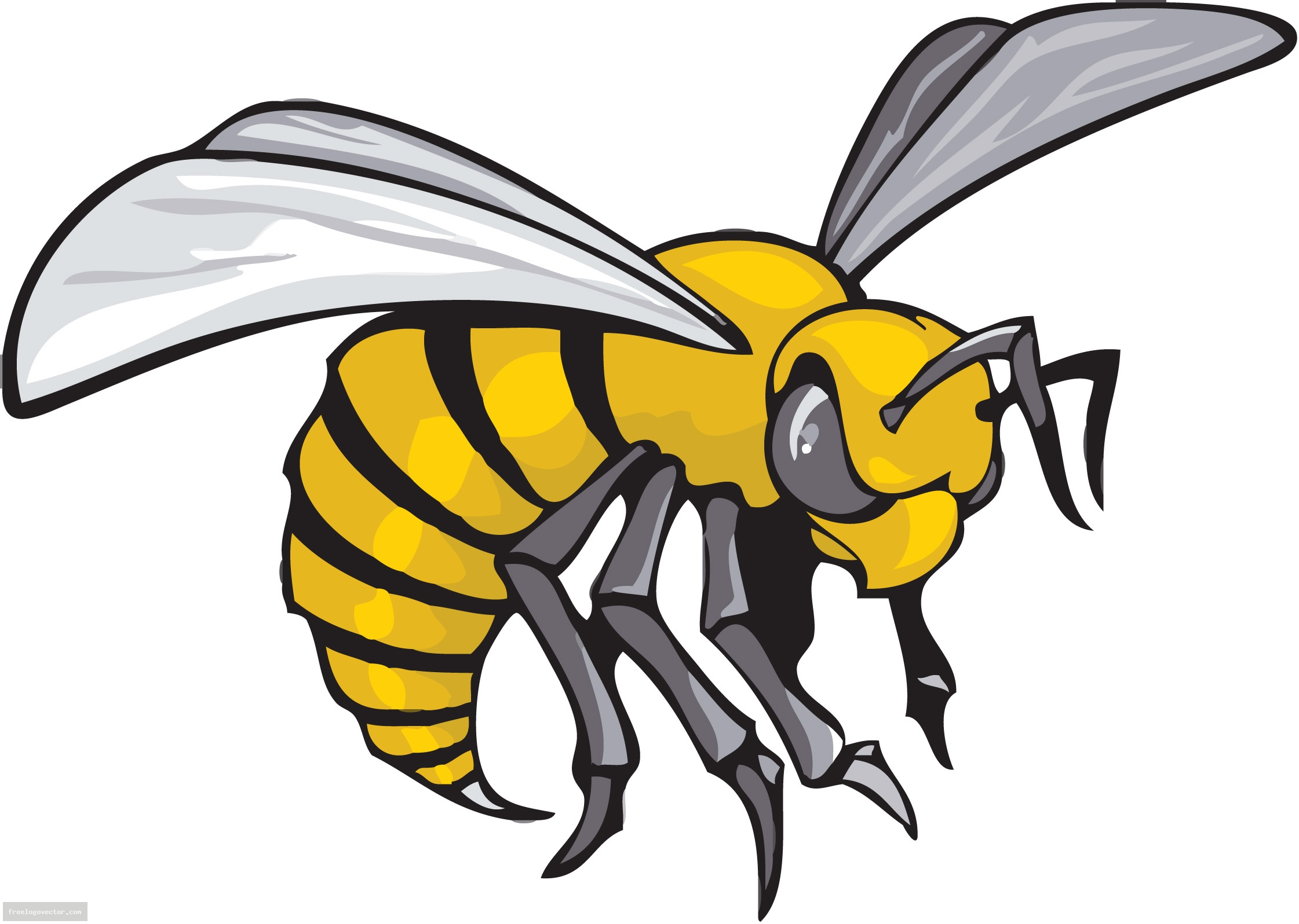 free clip art yellow jacket - photo #16