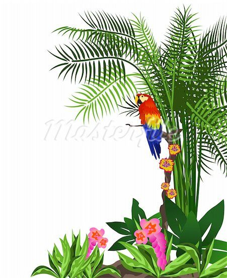 Pictures Tropical Leaf Rain Forest Background Clipart Car Pictures