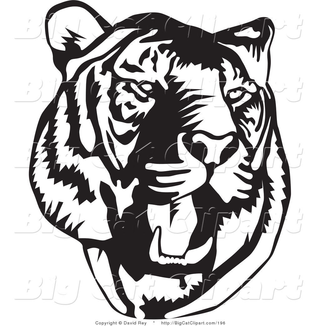 Tiger roar vector - photo#18