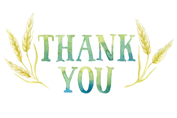 Thank You Tag In Wheat Frame   Illustrations On Creative Market