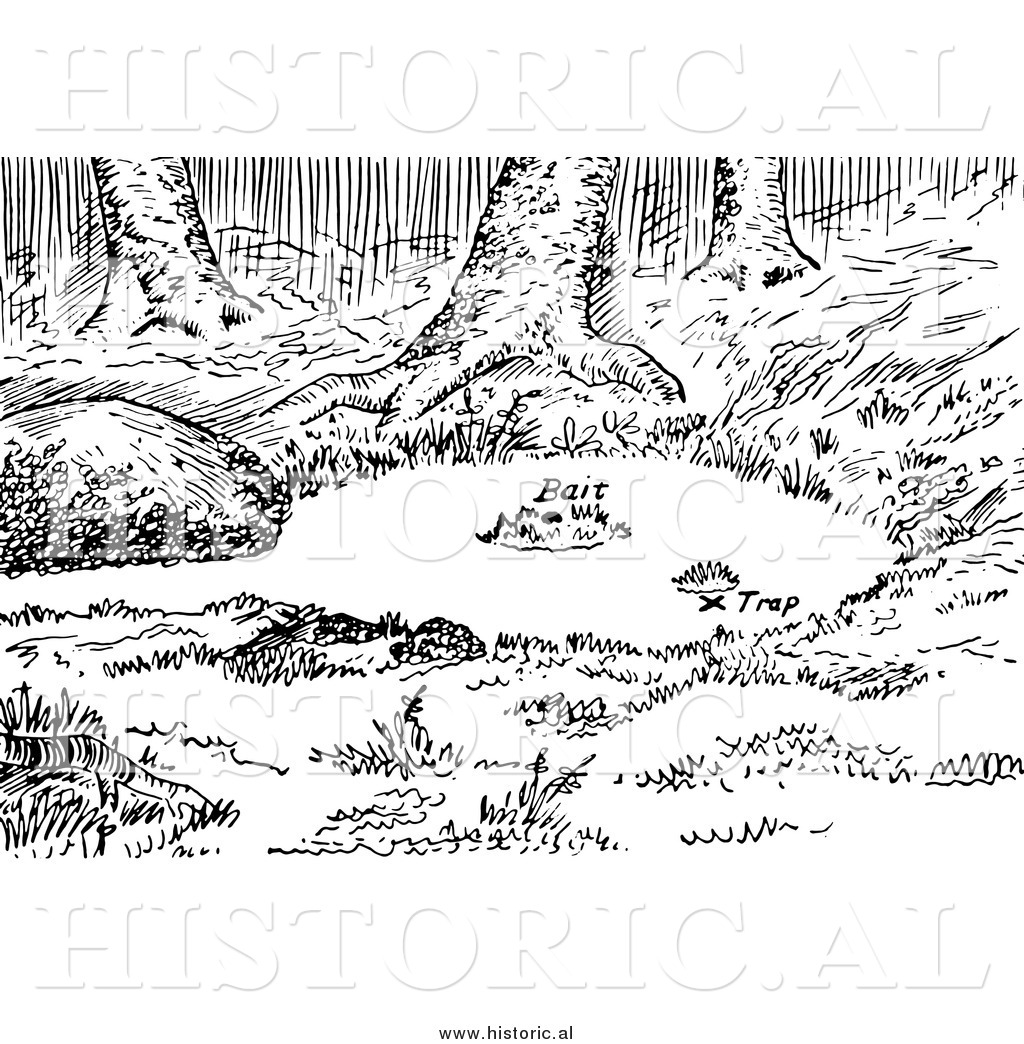 Lake Clipart Black And White Clipart Of A Set Fox Water