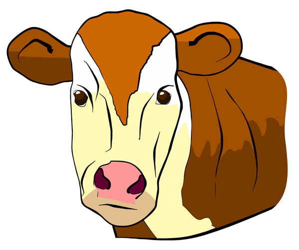 Cow Face   Free Clip Art