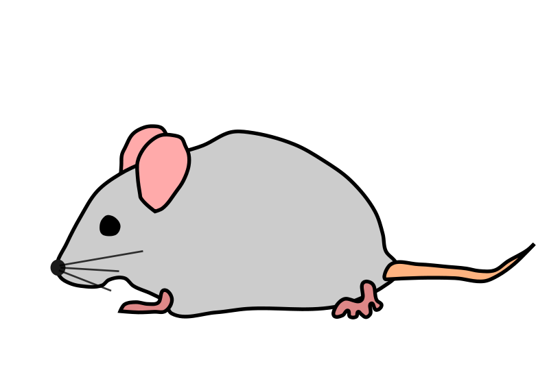 Small Mouse Clipart - Clipart Kid