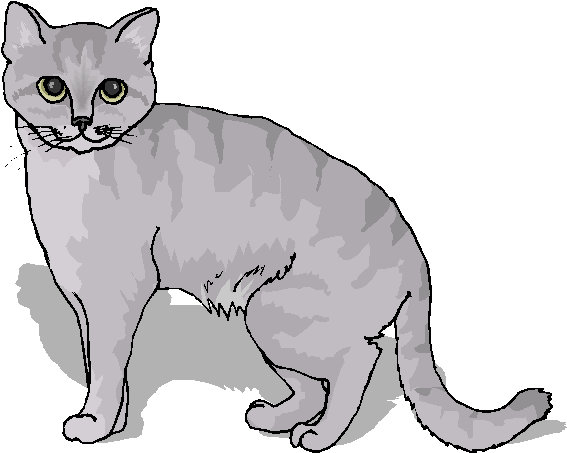 Free Animal Clipart Do You Like This Funny Cat Clipart