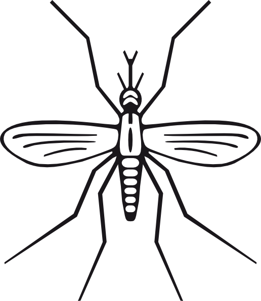 Mosquito Clip Art At Clker Com   Vector Clip Art Online Royalty Free