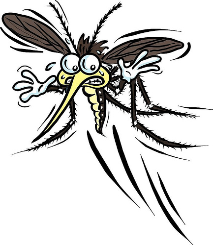 Mosquito   Free Images At Clker Com   Vector Clip Art Online Royalty