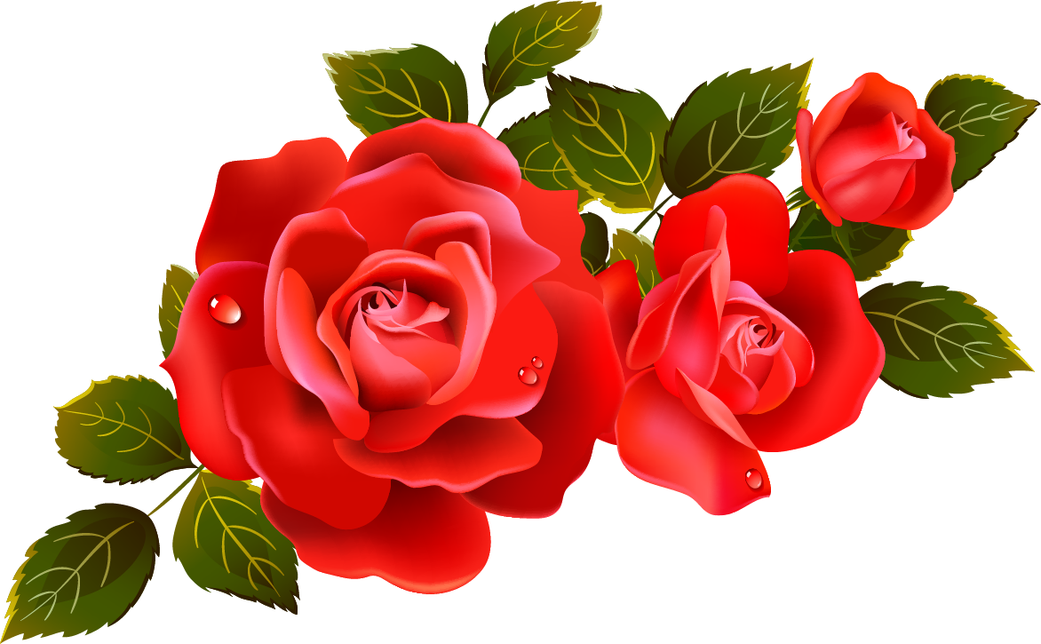 Red Rose Png Clipart Best - Clipart Kid