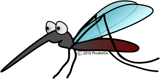 Insekt - Stressed