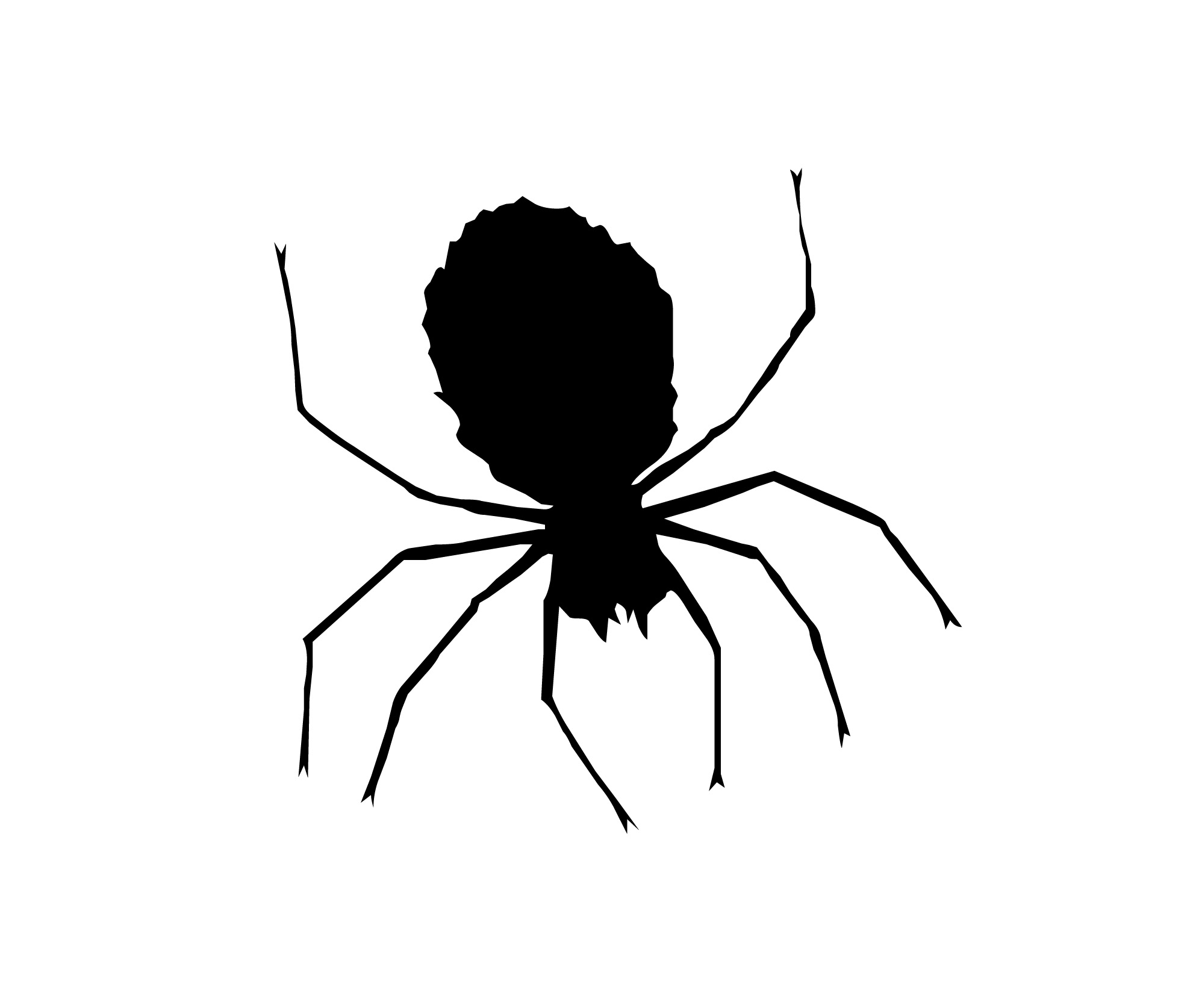 Black And White Spider Clipart - Clipart Suggest