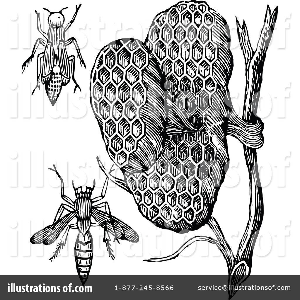 Bees Nest Clipart Royalty Free  Rf  Wasp Clipart