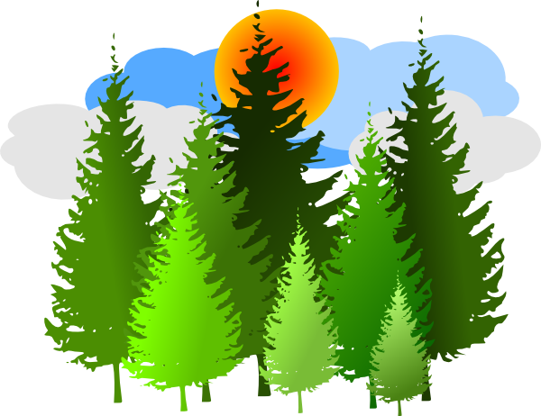 Clip Art Forest Clip Art forest clipart kid pine forest