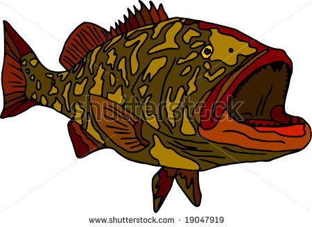 Vector   Fish Gag Grouper Isolated On White Background