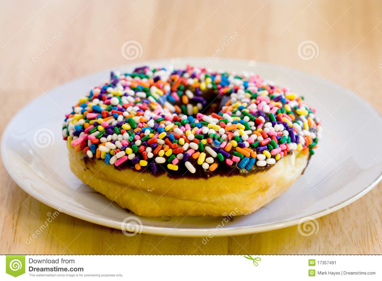 Fresh Chocolate Donut With Sprinkles On Plate