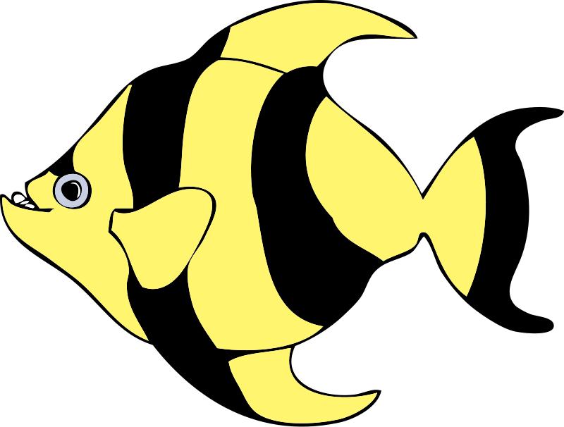 Fish Food Clipart Png 61 52 Kb