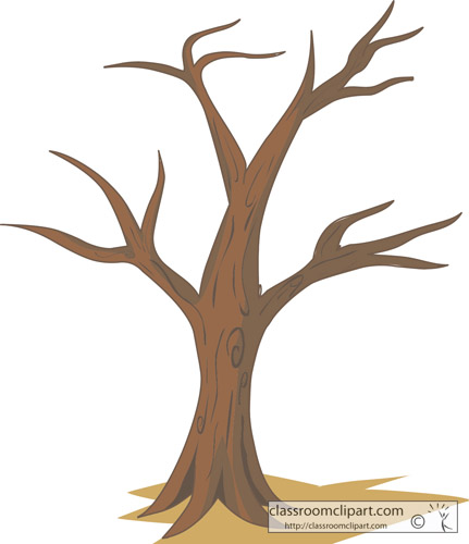Trees   Tree No Leaves   Classroom Clipart