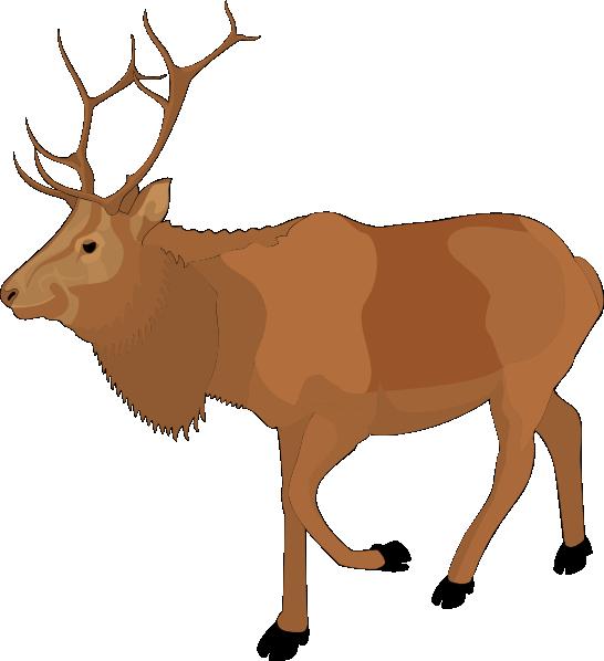 Clip Art Moose Clip Art cartoon moose clipart kid brown clip art at clker com vector online royalty