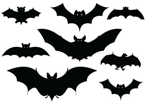 Halloween Bat Silhouette Vector Packcategory  Halloween Vector