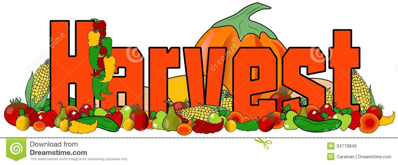 Royalty Free Stock Image  Harvest  Image  34779846