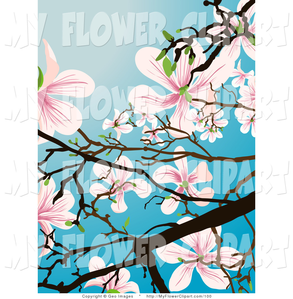 Flowering Tree Clipart - Clipart Kid