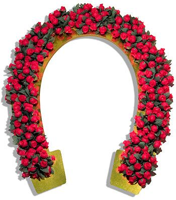 Garland Of Roses Horseshoe