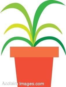 Clip Art House Plant Clipart - Clipart Kid