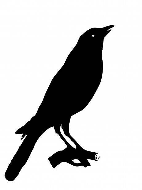 Bird Crow Clipart By Karen Arnold