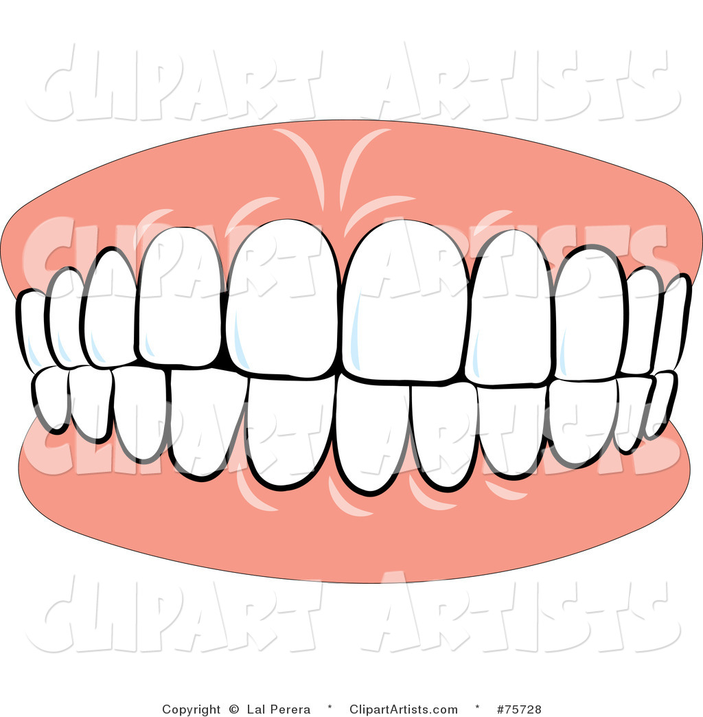 Teeth Clipart Vector Teeth Clipart By Lal Perera 75728 Jpg