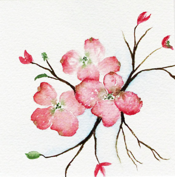 Dogwood Branch Clip Art Original Pink Dogwood Tree