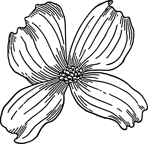 Flower 22 Clip Art At Clker Com   Vector Clip Art Online Royalty Free