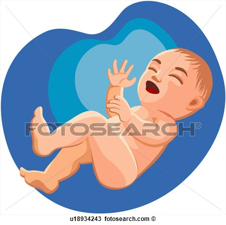 Clipart   Character Week 0 4 Suckling Newborn Baby  Fotosearch