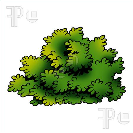 Shrub Clipart - Clipart Suggest
