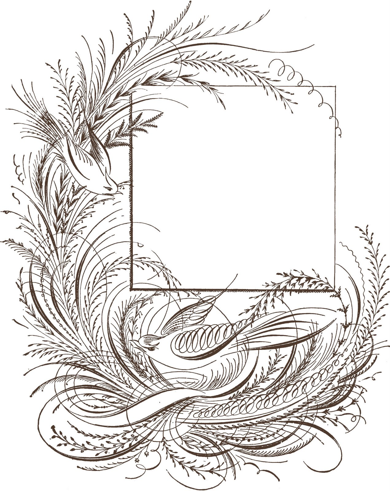 2bsquared Designs  Clip Art  Fancy Pants Flourishes