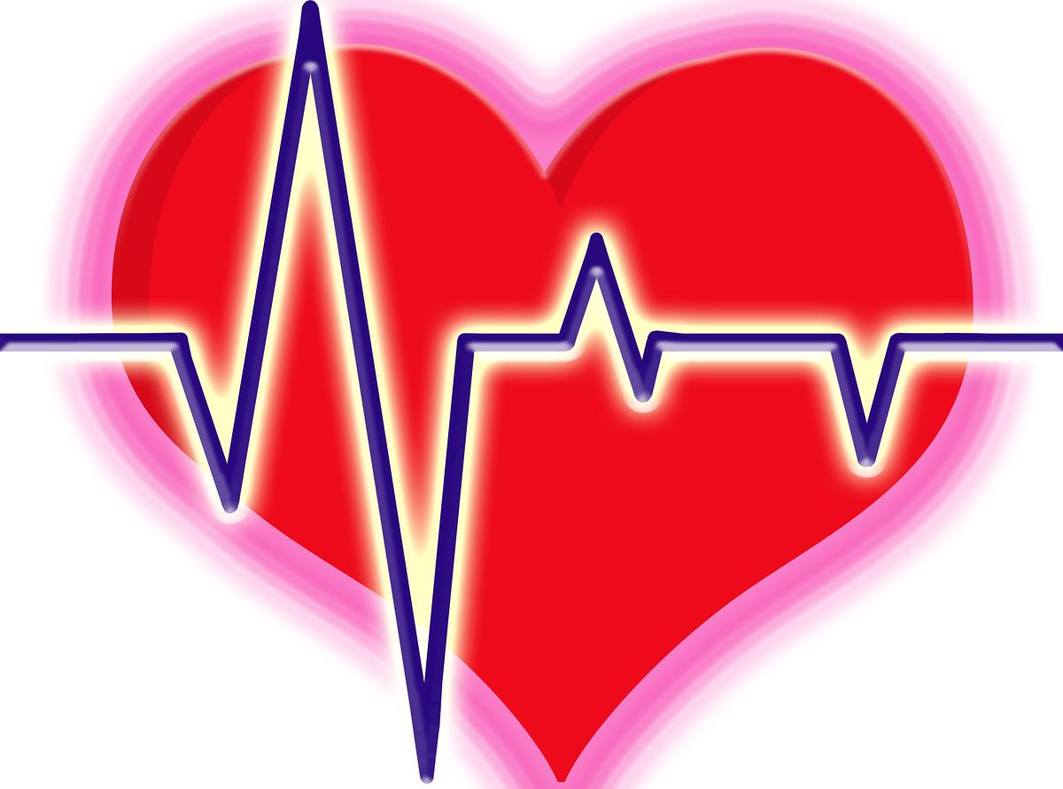 Clip Art Heartbeat Clipart heart beat clipart kid line clip art