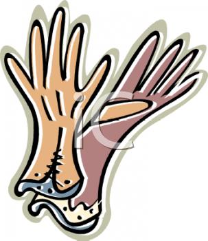 Work gloves clipart