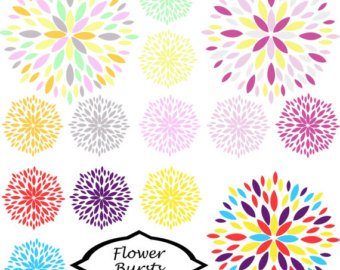 Flower Burst Blossom Clipart Set Of 14