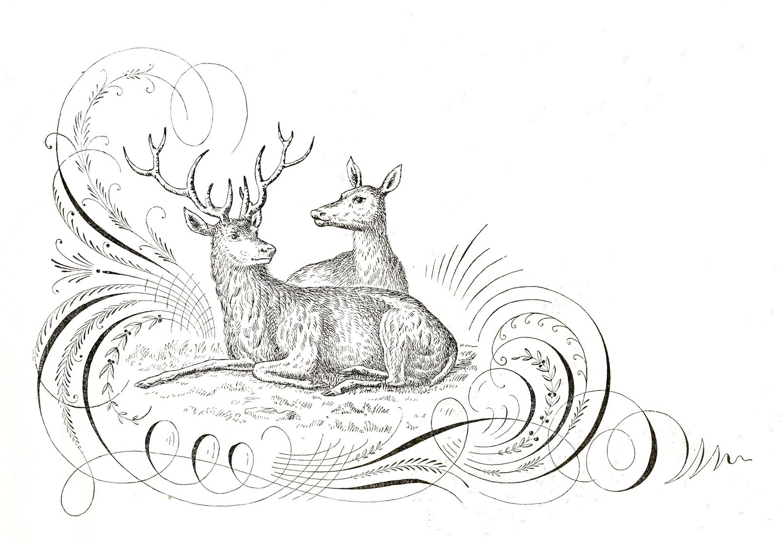 Holiday Deer Clip Art From The Graphics Fairy