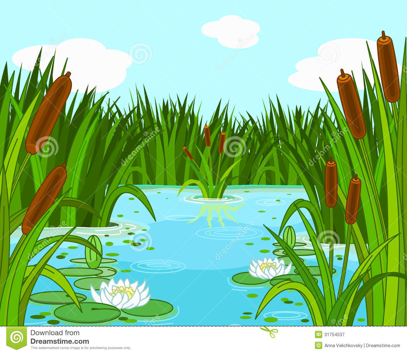 Pond Scene Royalty Free Stock Photography   Image  31754537