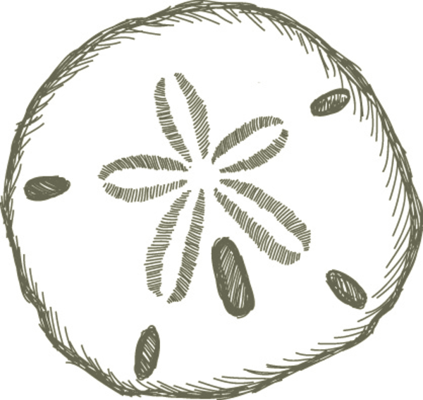 Sand Dollar Black And White Clipart