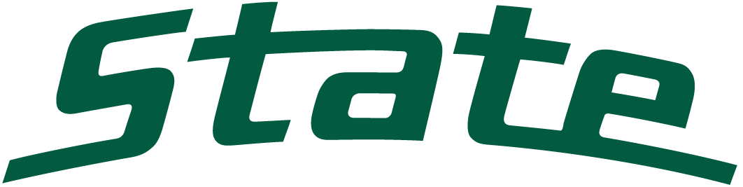 Michigan State Spartans Wordmark Logo  0     State