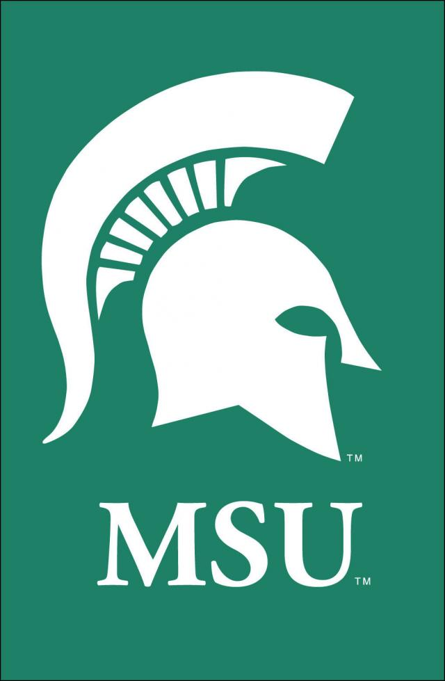 Michigan State University License Plate   Logo Products 4 Less