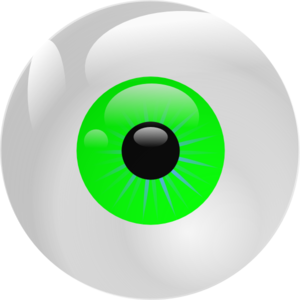 Eyeball Green Clip Art At Clker Com   Vector Clip Art Online Royalty
