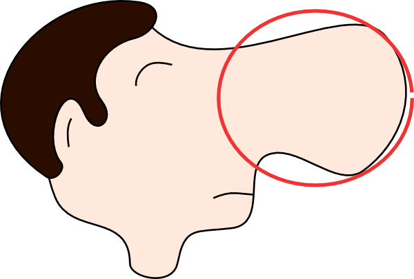 Nose Clip Art For Kids