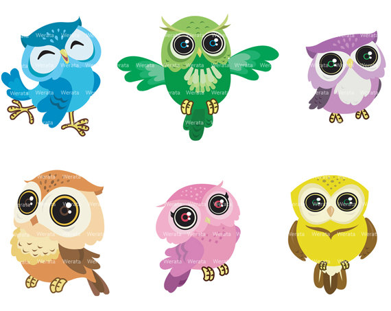 Owl Clip Art Digital Clipart   Cute Owl Digital Clip Art   Digital Owl