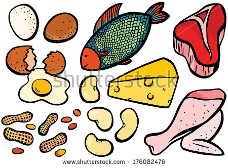 Protein Food Clipart Protein Foods Set   Stock